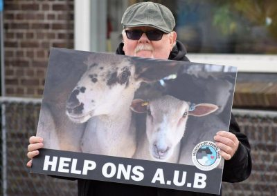 De Hoef Animal Save juni 2019